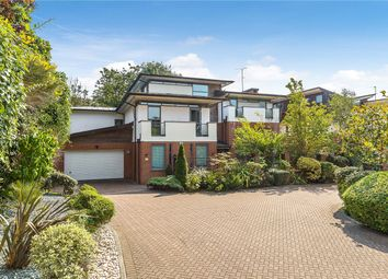 Thumbnail 5 bed detached house for sale in Paddock Way, London