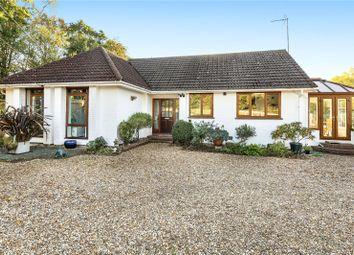 Thumbnail 3 bed bungalow for sale in Isington, Alton, Hampshire