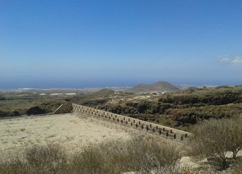 Thumbnail Land for sale in Charco Del Pino, Granadilla De Abona, Tenerife, Canary Islands, Spain