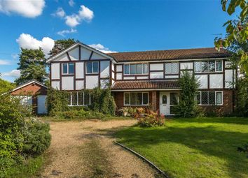 Thumbnail 5 bed detached house for sale in Batts Corner, Dockenfield, Surrey