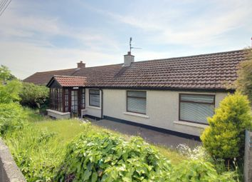 Thumbnail 2 bed terraced bungalow for sale in Shore Road, Kircubbin