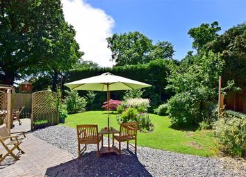 2 bed detached bungalow for sale in Hays Cottages, Steep, Petersfield, Hampshire GU32