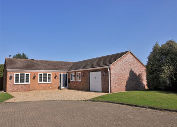 Thumbnail 4 bed detached bungalow for sale in Larkspur Gardens, Holbury, Southampton