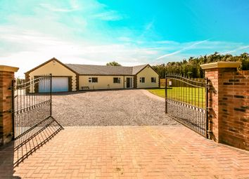 Thumbnail 4 bed detached bungalow for sale in Ryefield Lane, Holbeach Fen, Holbeach, Spalding