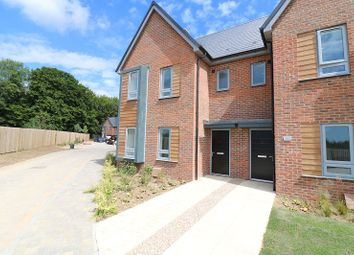 Thumbnail 4 bed semi-detached house to rent in Peter Churchill Lane, Ashford