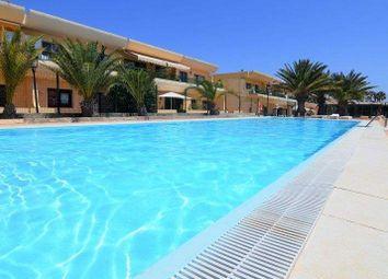 Thumbnail 1 bed apartment for sale in 35660 Corralejo, Las Palmas, Spain