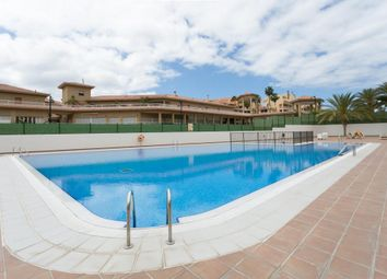 Thumbnail 1 bed bungalow for sale in Los Cristianos, Santa Cruz De Tenerife, Spain