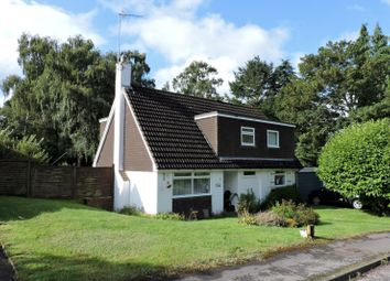 Thumbnail 4 bed property to rent in Pine View Close, Chilworth, Guildford