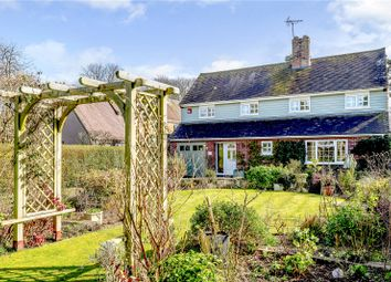 8 The Avenue, Chichester, West Sussex PO19. 4 bed detached house for sale