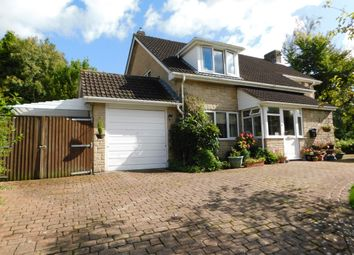 Thumbnail 4 bed detached house for sale in Membury, Axminster