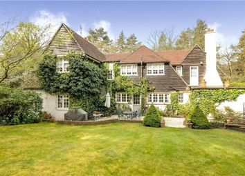 Thumbnail 4 bed detached house for sale in Westwood Road, Windlesham, Surrey