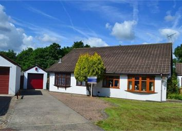 Thumbnail 4 bed semi-detached bungalow for sale in Tollgate Close, Caerphilly