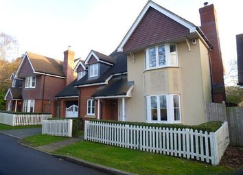 Thumbnail 4 bed detached house to rent in Mcindoe Drive, Wendover, Aylesbury