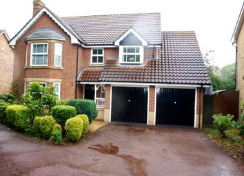 Thumbnail 4 bed detached house to rent in Poplar Drive, Shenfield