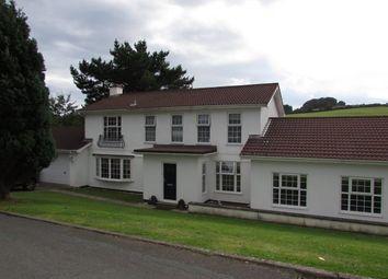 Thumbnail 4 bed detached house to rent in River Walk, Braddan, Douglas, Isle Of Man