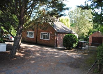 Thumbnail 3 bed bungalow to rent in Fordham Road, Newmarket