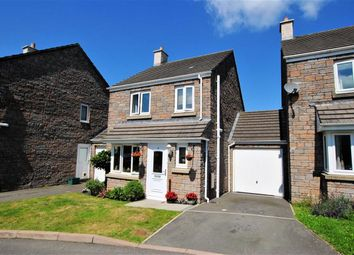 Thumbnail 3 bedroom detached house for sale in Hawkins Walk, Okehampton, Devon