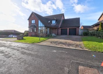 Thumbnail 4 bedroom detached house for sale in Teal Rocks, Newtownards
