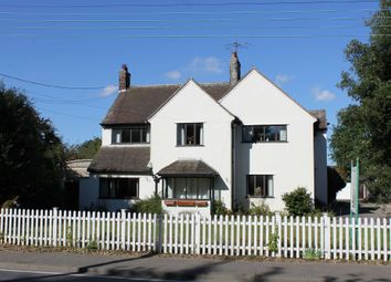 Thumbnail Detached house for sale in Halesworth Road, Reydon, Southwold