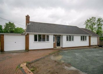 Thumbnail 3 bedroom detached bungalow for sale in Maesbury Marsh, Oswestry