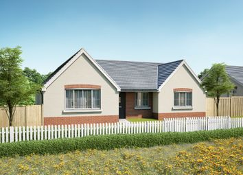Thumbnail 3 bed detached bungalow for sale in Vine Tree Close, Withington