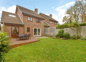 Thumbnail 4 bed link-detached house to rent in Lindley Gardens, Alresford, Hampshire
