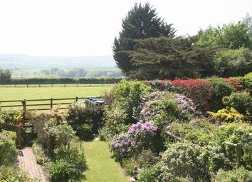 Thumbnail 3 bed cottage for sale in Oakford, Tiverton