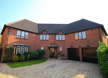 Thumbnail 4 bed detached house for sale in Matchams Close, Ringwood, Hampshire