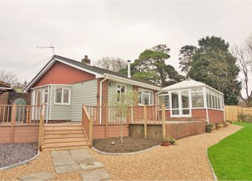 Thumbnail 3 bedroom detached bungalow for sale in Blackwater, Blackwater, Newport