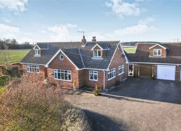 Thumbnail 5 bed detached house for sale in Escrick Road, Wheldrake, York