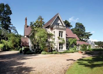 Thumbnail 6 bedroom detached house to rent in Westwood Road, Windlesham, Surrey