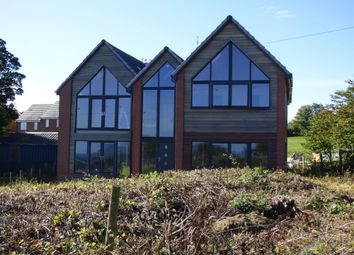 Thumbnail 4 bed detached house for sale in The Avenue, Burnhope, Durham