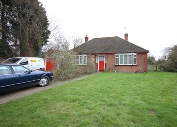 Thumbnail Detached bungalow to rent in Foster Street, Harlow