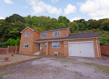 Thumbnail 4 bed detached house for sale in Tan Lan, Ffynnongroyw, Holywell