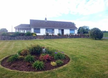 Thumbnail 5 bedroom detached bungalow for sale in Begney Hill Road, Dromara, Down