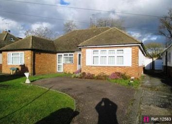 Thumbnail 2 bed semi-detached bungalow to rent in Culworth Close, Caddington, Luton