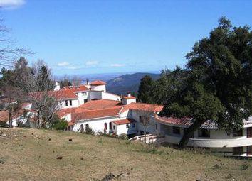 Thumbnail Villa for sale in Languedoc-Roussillon, Pyrenees-Orientales, Mas 1440M2 Sur