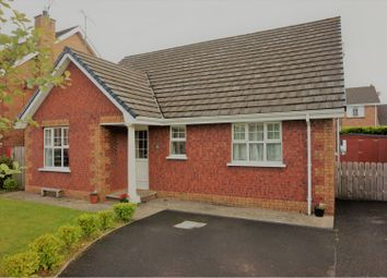 Thumbnail 4 bed property for sale in Alderbrook, Eglinton. Derry / Londonderry