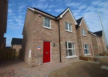Thumbnail 3 bed semi-detached house to rent in Lisburn