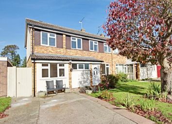 Thumbnail 4 bed semi-detached house to rent in Rainsford Road, Stansted, Essex