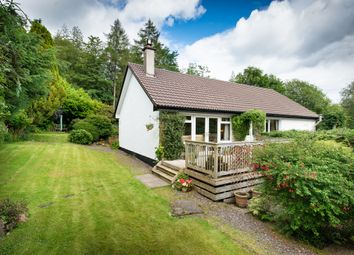 Thumbnail 4 bed detached bungalow for sale in Farm Lane, Glenfinnan