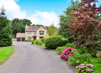 Thumbnail 4 bed detached house for sale in The Sycamores, Bourton, Gillingham