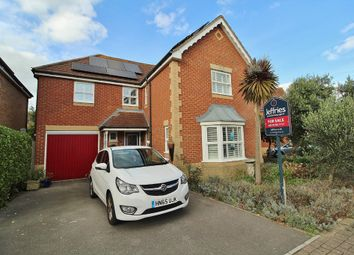 Thumbnail 4 bedroom detached house for sale in Siskin Road, Southsea