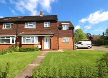 Thumbnail 5 bed semi-detached house for sale in Lime Grove, Guildford