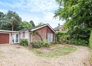Thumbnail 3 bed detached bungalow to rent in New Wokingham Road, Crowthorne, Berkshire