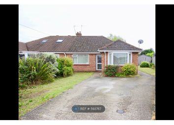 Thumbnail 3 bed bungalow to rent in Lone Barn Road, Norwich