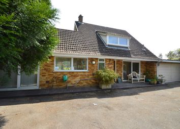 Thumbnail 4 bed detached house to rent in Hermitage Close, Clare, Suffolk