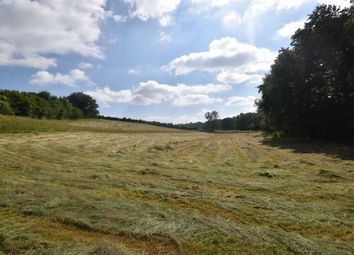 Thumbnail Land for sale in Barrel Lane, Aston Ingham, Herefordshire