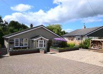 Thumbnail 2 bed bungalow for sale in Lakeside, Dalwood, Axminster, Devon