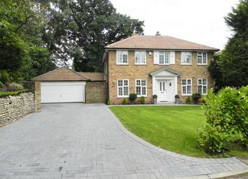Thumbnail 4 bed detached house to rent in Branksome Close, Camberley, Surrey